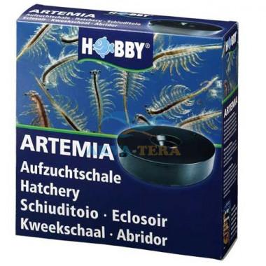 Artemia Zucht Set plus 100 gArtemia Eier
