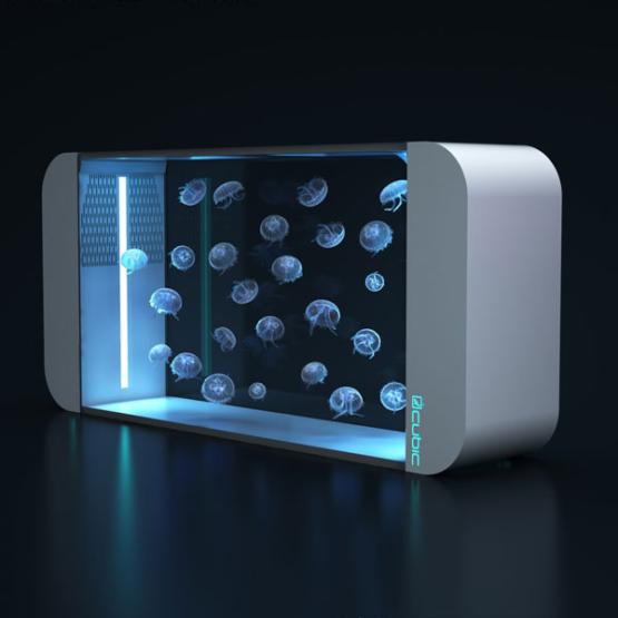 Quallen Aquarium Cubic 160