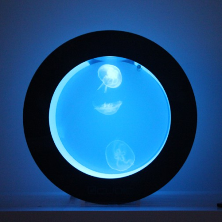 Quallen Aquarium Cubic Orbit