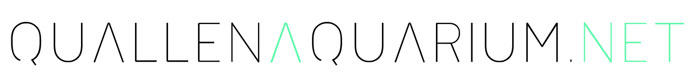 Quallen Aquarium und Quallen kaufen