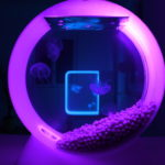 jellyfish tank jellyfish art
