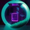 jellyfish art jellyfish aquarium