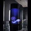 Quallen Aquarium Jellyfish Art Nano 3