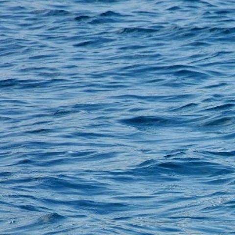 Salzwasser für Quallen plus Barrel 20 l