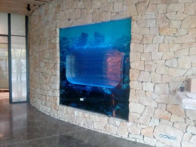quallen aquarium zoo