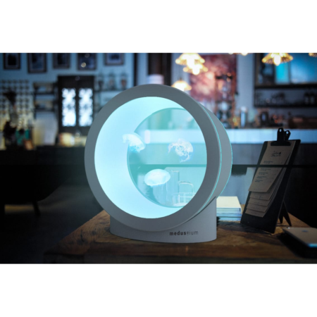 Quallen Aquarium Medusium circle | Premium jellyfish aquarium