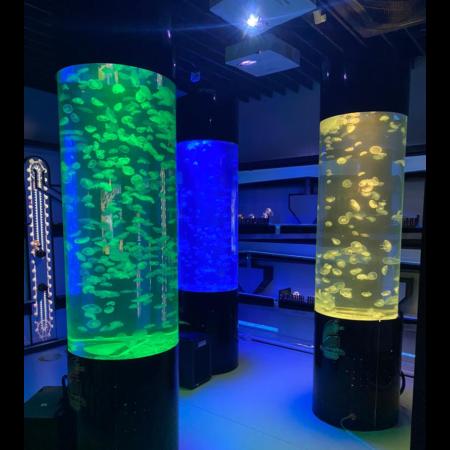 Aquarium für Quallen C600