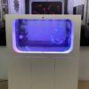ff aquarium_5